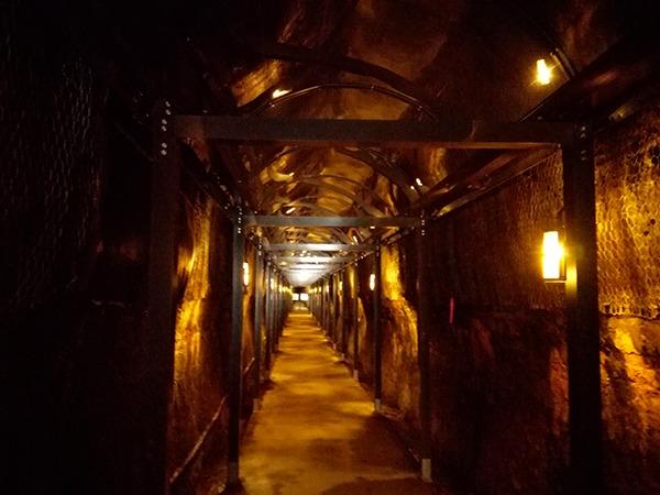 中山隧道のライトアップ