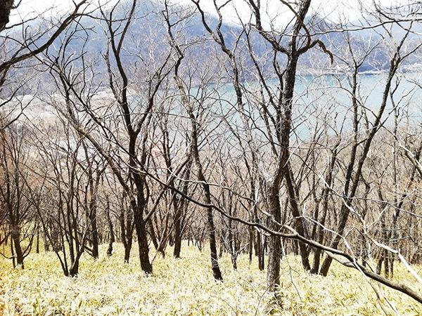 榛名富士登山道から見える風景