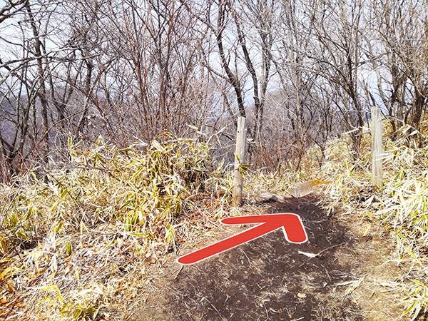 榛名富士からゆうすげ元湯に行く道