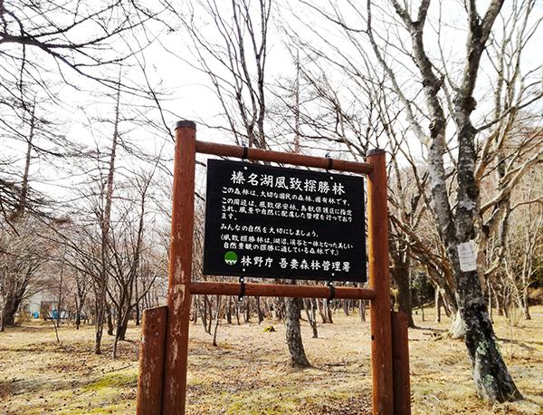 榛名湖風致探勝林の看板