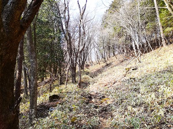 烏帽子岳登山道