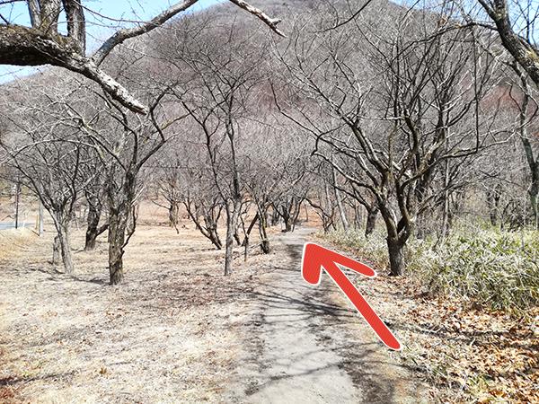 榛名富士登山口からの道