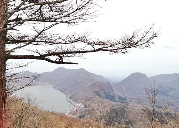 掃部ヶ岳から景色