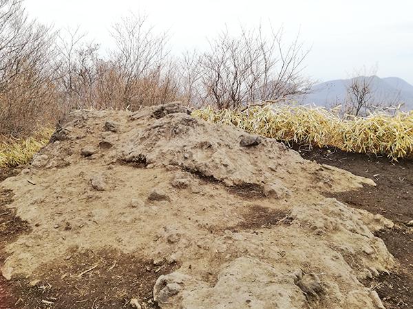 掃部ヶ岳山頂の岩