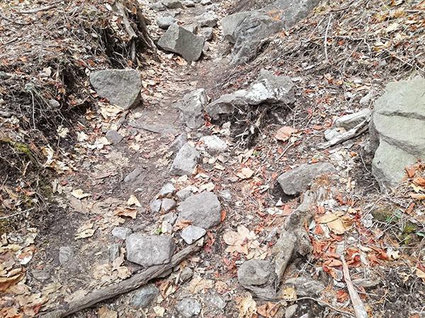 掃部ヶ岳登山道の足元の様子