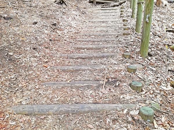 掃部ヶ岳登山道の階段の様子