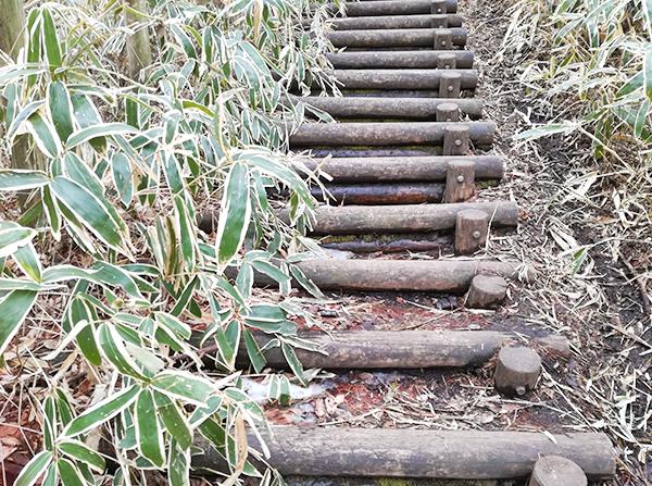 掃部ヶ岳山頂へ向かう道の階段