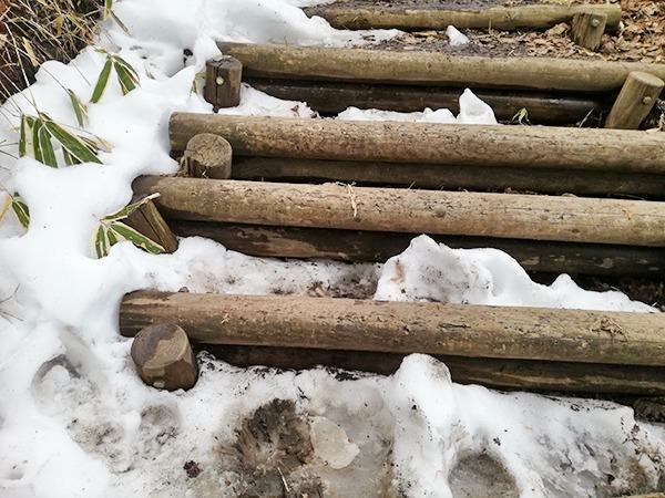 掃部ヶ岳山頂へ向かう道の階段の雪