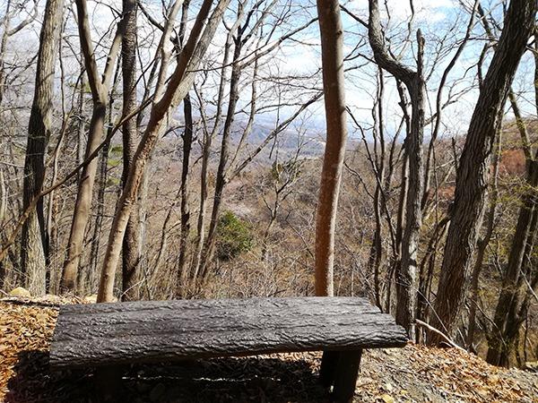 自然遊歩道「Cコース」のベンチ
