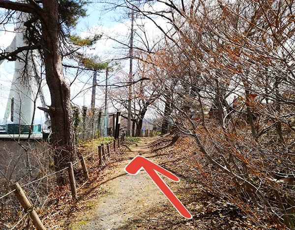 自然遊歩道「Aコース」を登り切った先へ