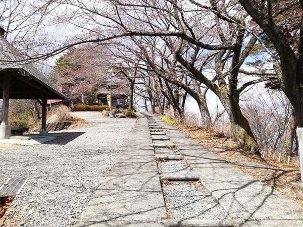琴平神社へ進む道