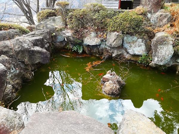 牛伏山の池