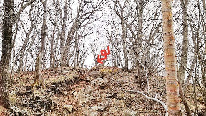 相馬山に向かう岩場の道から見た鳥居