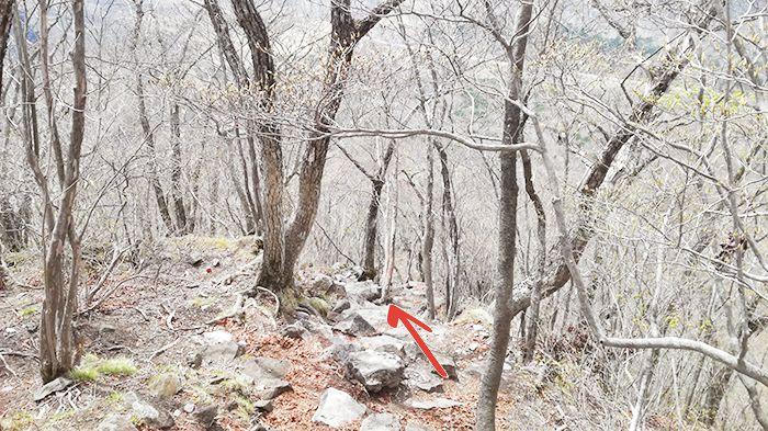 相馬山山頂から下山