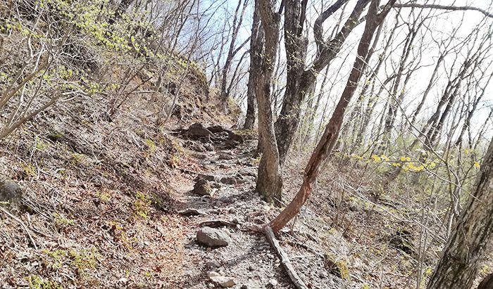 スルス岩から松之沢峠方面で下山する道