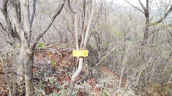 スルス岩から松之沢峠方面で下山する道にあるジョーズ岩の看板