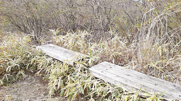 スルス岩から松之沢峠方面で下山する道にあるベンチ