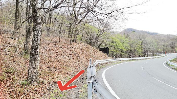 松之沢峠方面からゆうすげの道へ向かう道