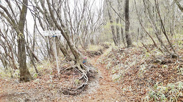 相馬山に向かうスルス峠の道