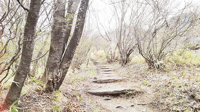 相馬山に向かうスルス峠の道の階段