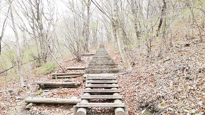 相馬山に向かう道の階段