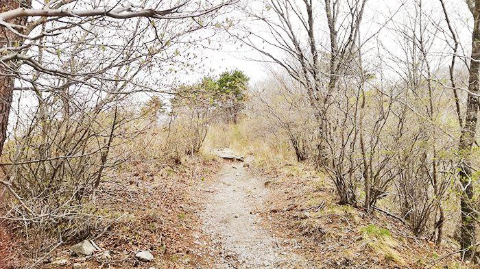 相馬山に向かう道