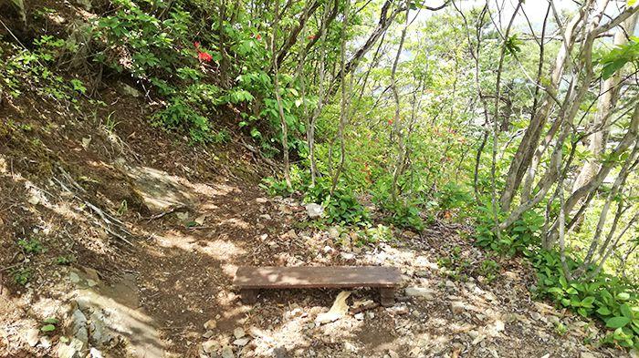 戸神山山頂付近のベンチ