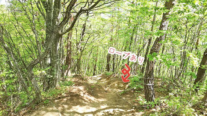 高王山の登山道のロープ