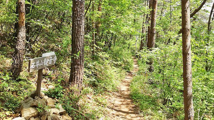 高王山の登山道の観音寺方面への分岐