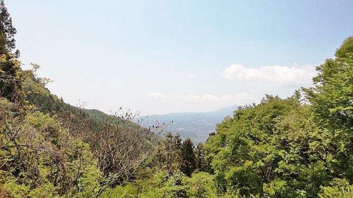高王山の登山道からの景色