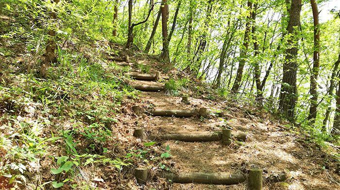 高王山の登山道にある階段