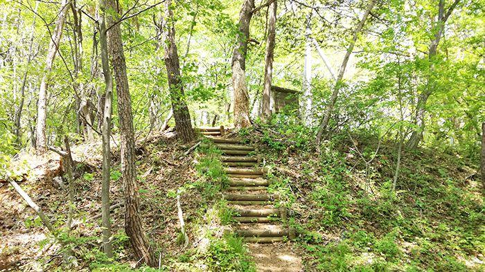高王山の登山道の階段