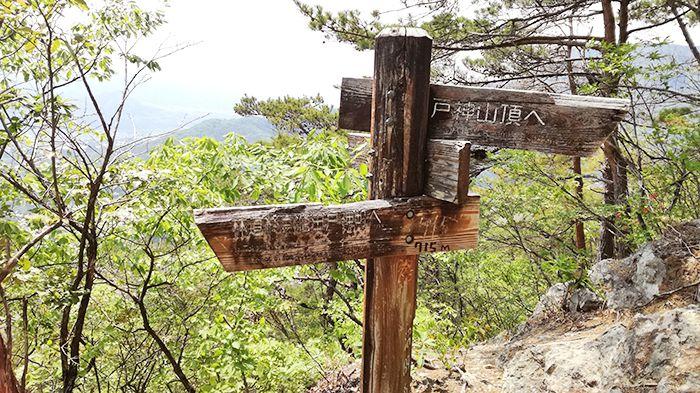 戸神山山頂から下山ルートの道