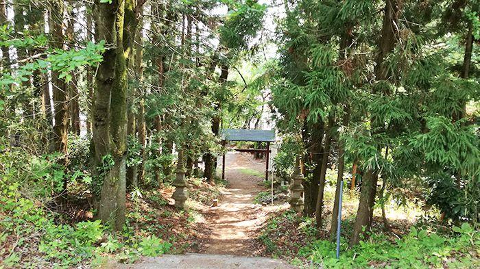 戸神山林道ルートの道から登山道入り口へ