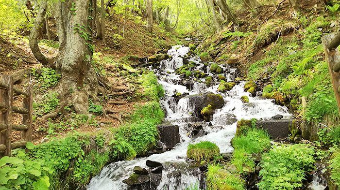 「強清水の滝」レポート(群馬・沼田市)