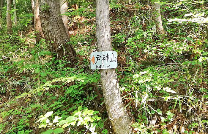 戸神山登山道にある看板