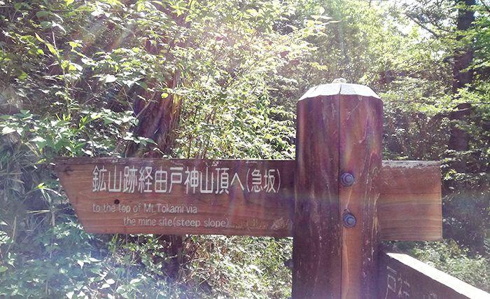 鉱山跡ルートと林道ルートの分岐の看板