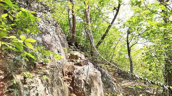 戸神山登山道から山頂への道