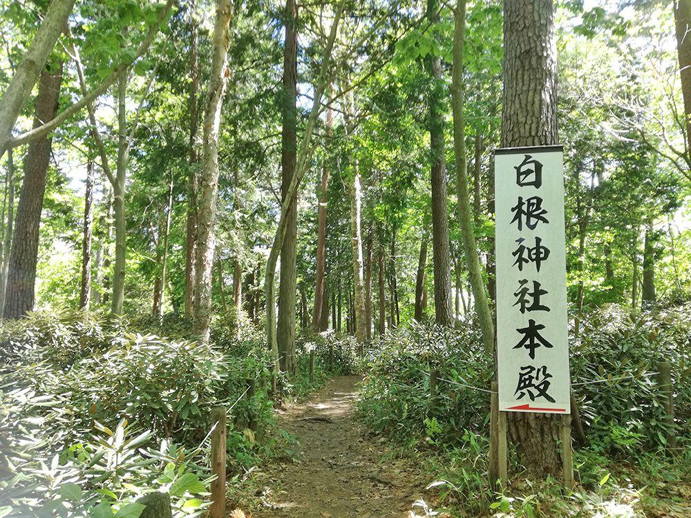 白根神社への道
