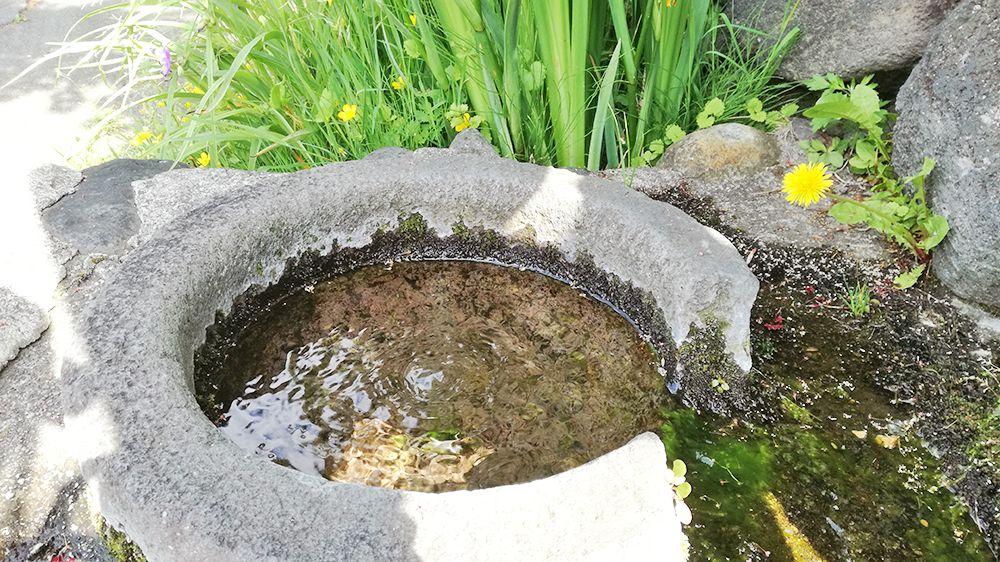 草津の石づくりの水場