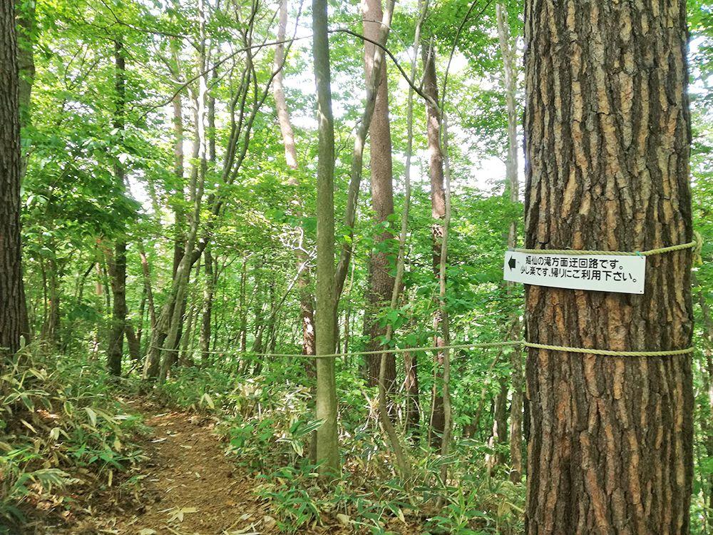 嫗仙の滝の自然遊歩道の分かれ道