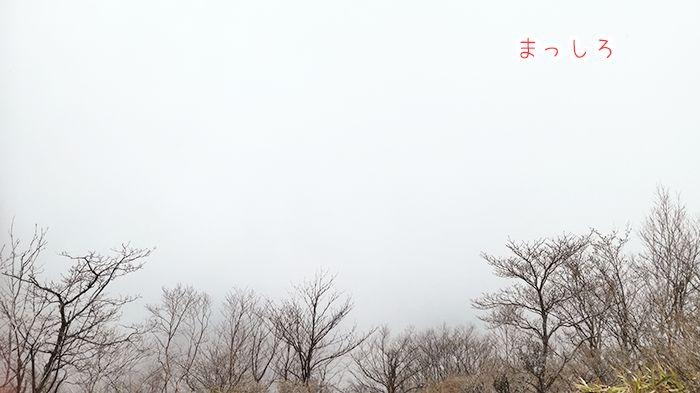 駒ヶ岳登山道から絶景スポットへ
