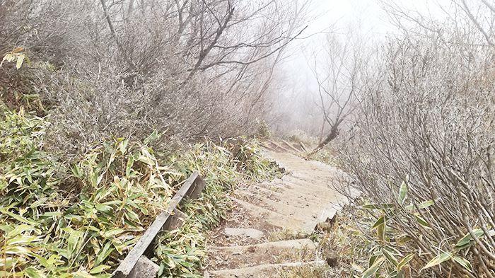 駒ヶ岳登山道