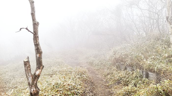 駒ヶ岳登山道と霧