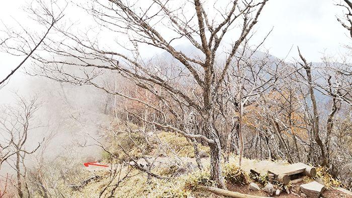 駒ヶ岳山頂からの道