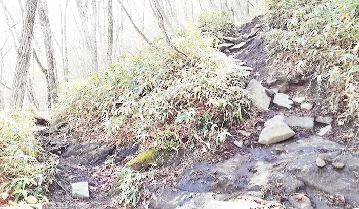 黒檜山登山道の分かれ道