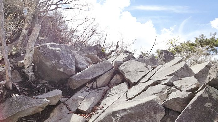 黒檜山登山道の岩