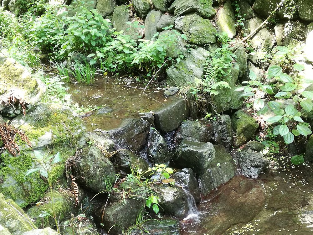 金鑚神社から駐車場への道にある水路