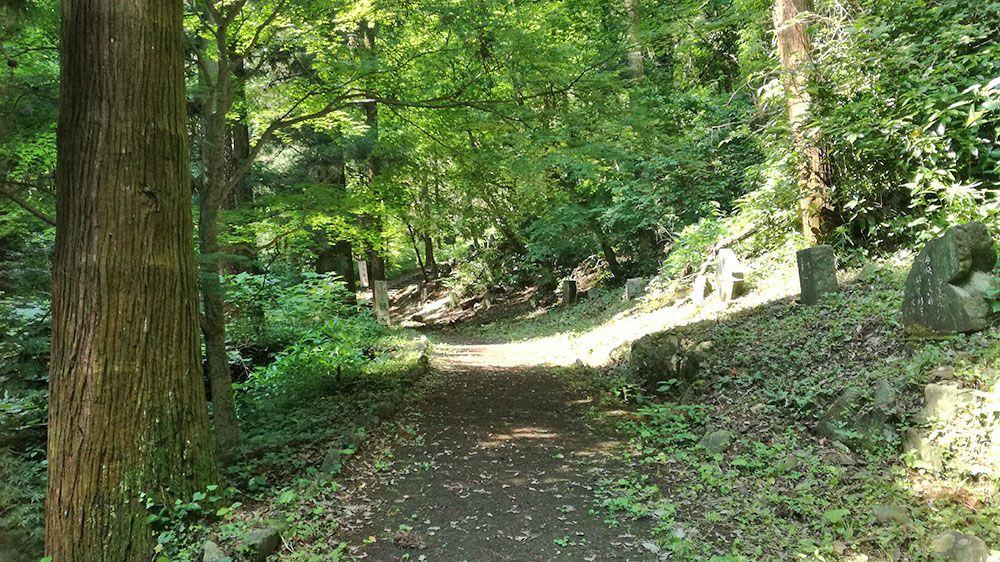 御嶽山ハイキングコースの道