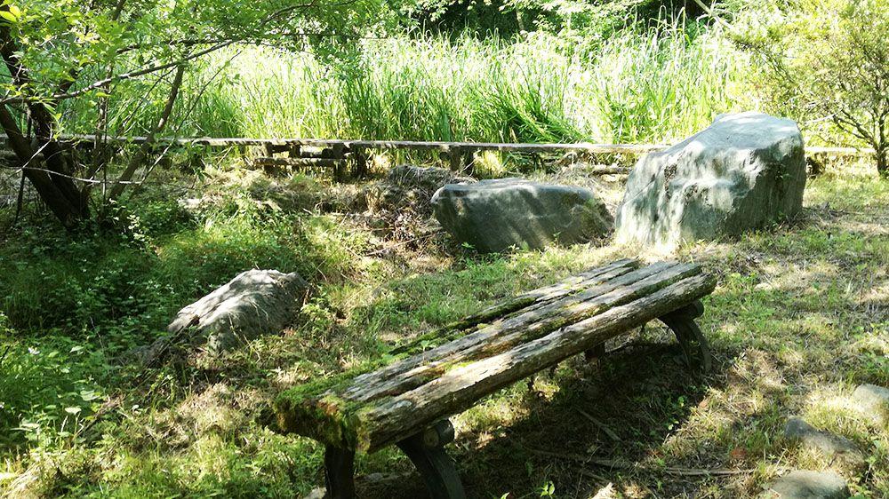 御嶽山ハイキングコースの道にあるベンチ